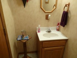 The Bathroom Before